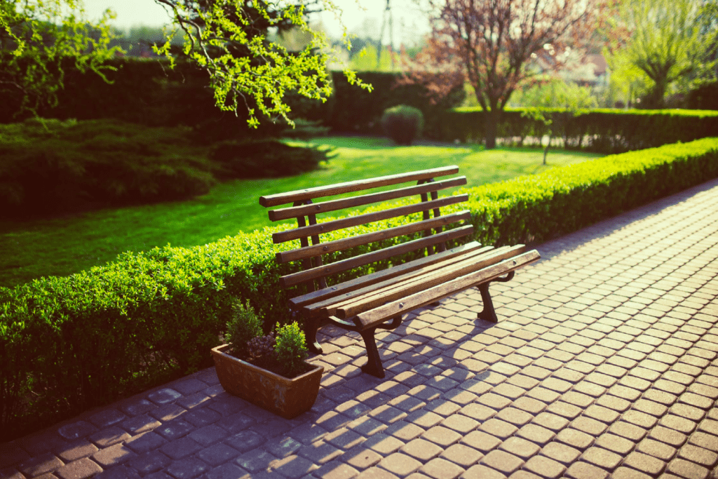 bench in front of lawn