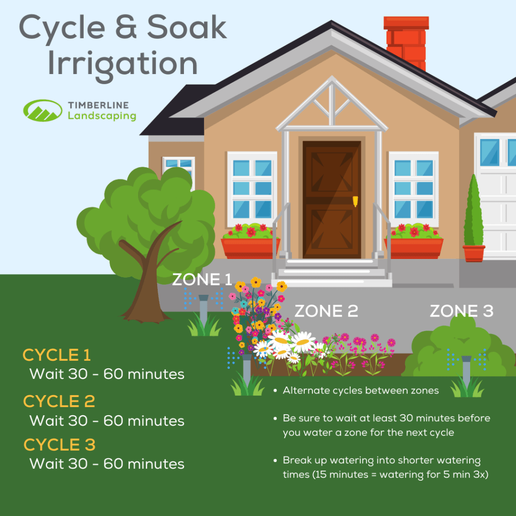 Cycle and Soak Irrigation Infographic