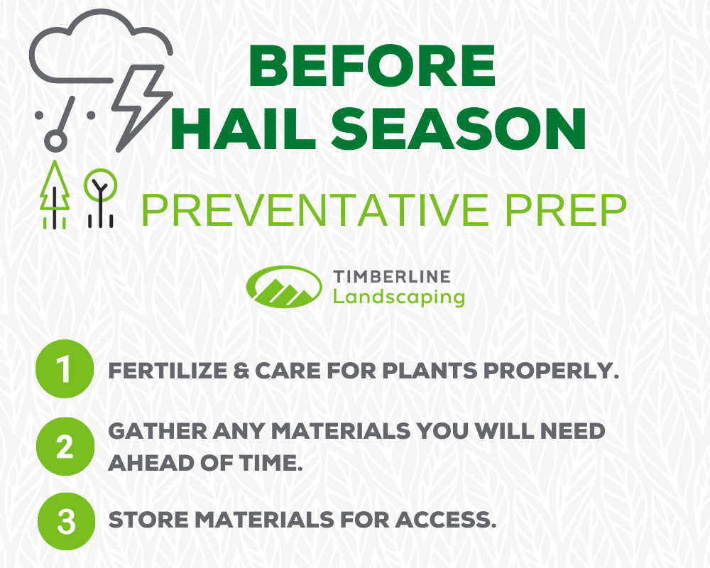 shielding your plants from hail storms