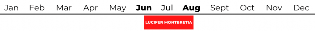 Lucifer Montbretia