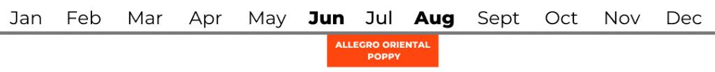 Allegro Oriental Poppy