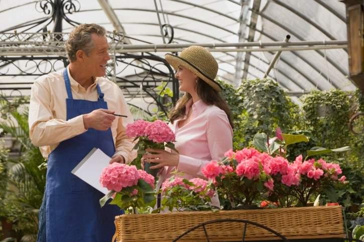 benefits-of -ocal-plants