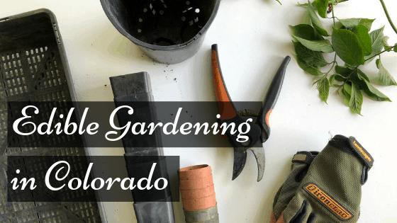 Growing an Edible Garden in Colorado