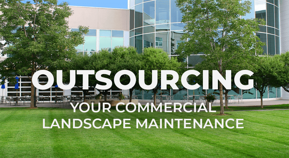 considerations when outsource your commercial landscape maintenance