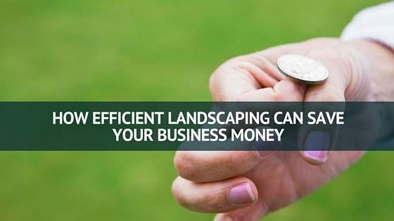 How Efficient Landscaping Can Save Your Business Money