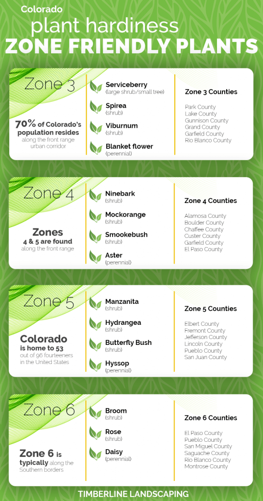 colorado plant hardiness zone friendly plants