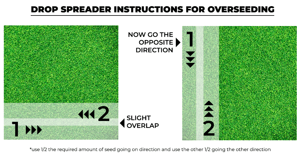 drop spreader instructions for overseeding