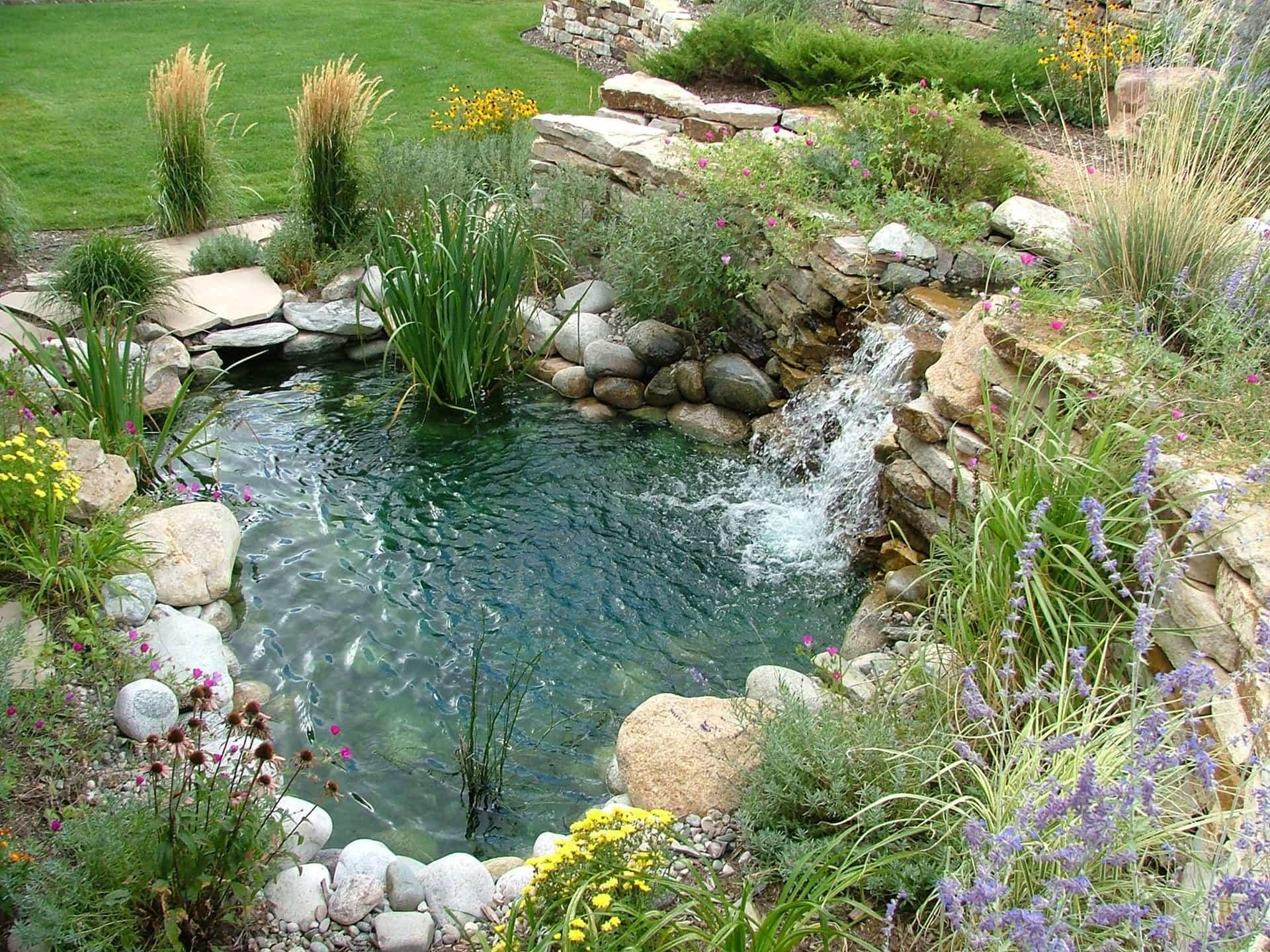 Pond installation Colorado Springs