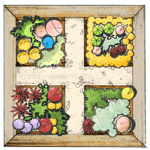 vegetable garden layout 2