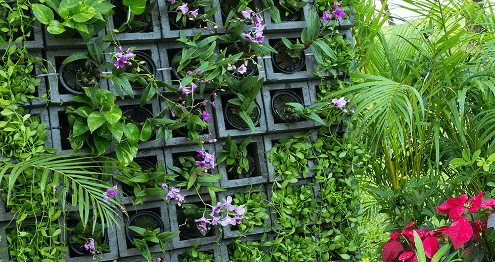 vertical wall garden that saves space