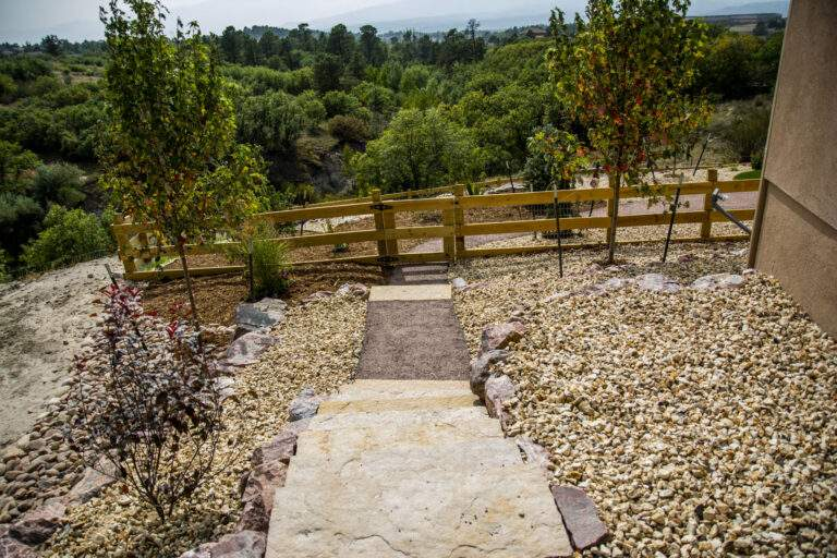 Path with Steps