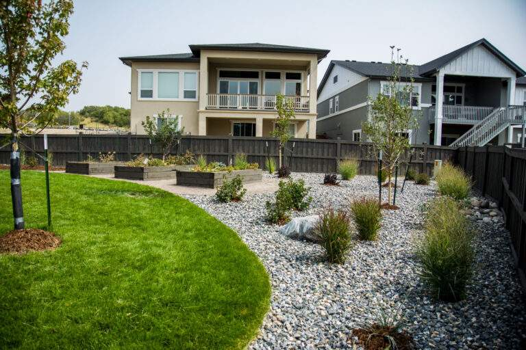 Xeriscaping with Plants
