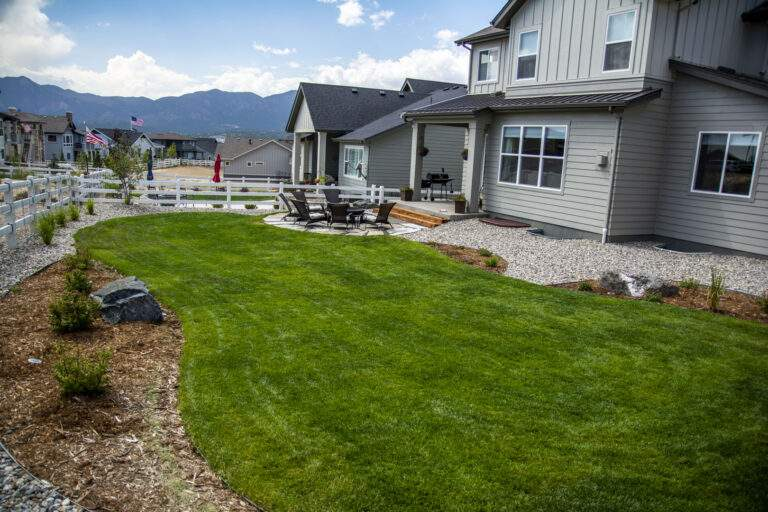 Backyard Turf Landscape