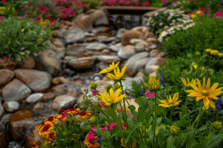 Flowers Surrounding Water Feature